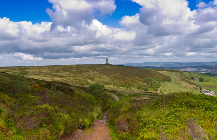 Darwen Tower Landscape Print copy