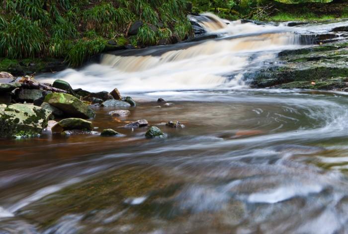 Roddlesworth Rapid