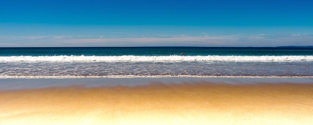 Sandy Beach Net Worth